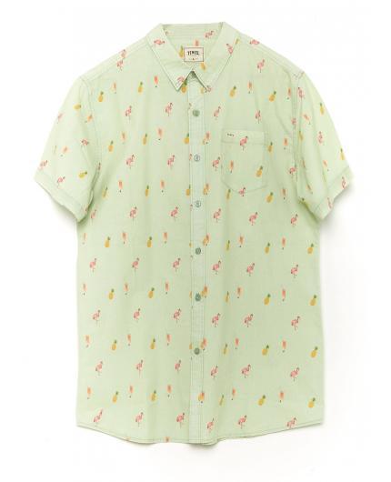 Camisa Tiwel Aruba Pastel green