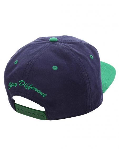 Gorra Iriedaily Team cap