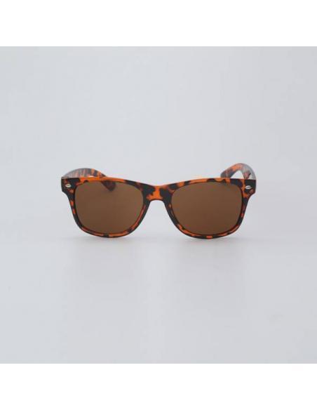 Gafas de Sol Hydroponic Wilton Tortoise/Brown